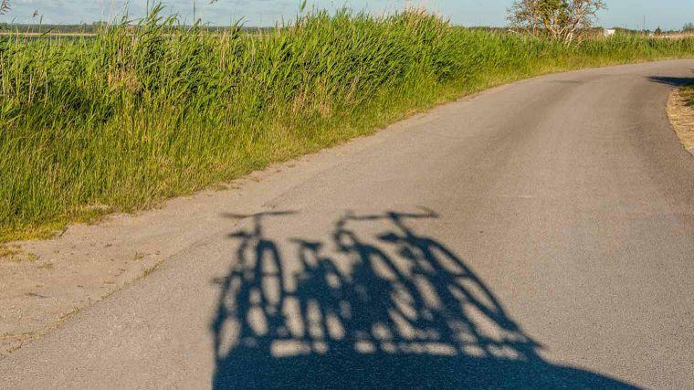 Ongekend Fietsaccessoire: fietsendrager | ANWB CG-53