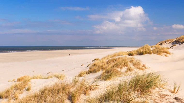 Weekaanbieding: 4 of 5 dagen Terschelling