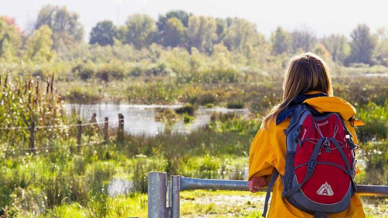 Wandelen Noord Brabant Bekijk Onze Wandeltips Anwb