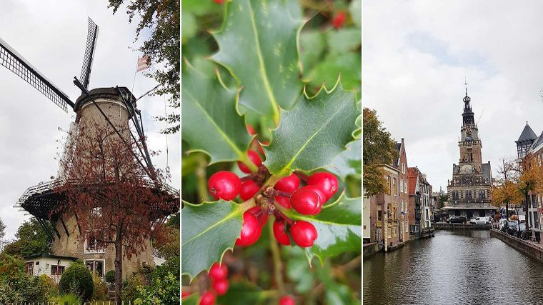 Top 7 stadswandelingen in de winter