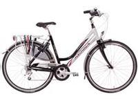 Beste Lichte Stadsfiets : Een fiets kiezen