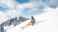 Kitzbüheler Alpen: áltijd gezellig